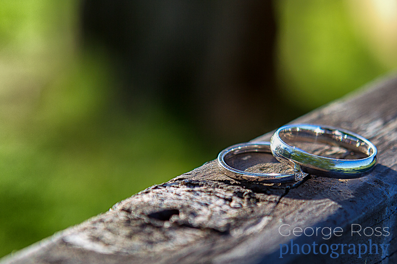 wedding rings on a rustic fence