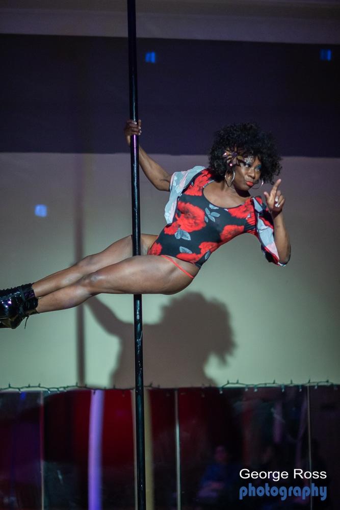 Studio 54 burlesque and cabaret show