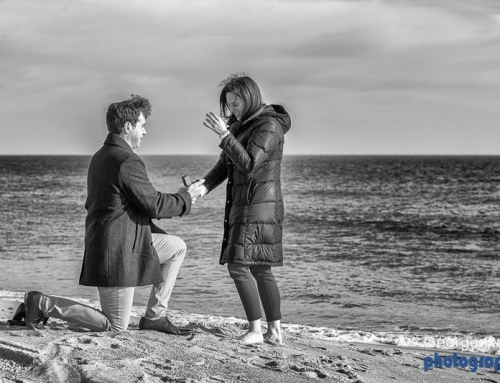 RI Proposal Photographer: Caitie and Mark's Proposal at the Ocean House, Rhode Island