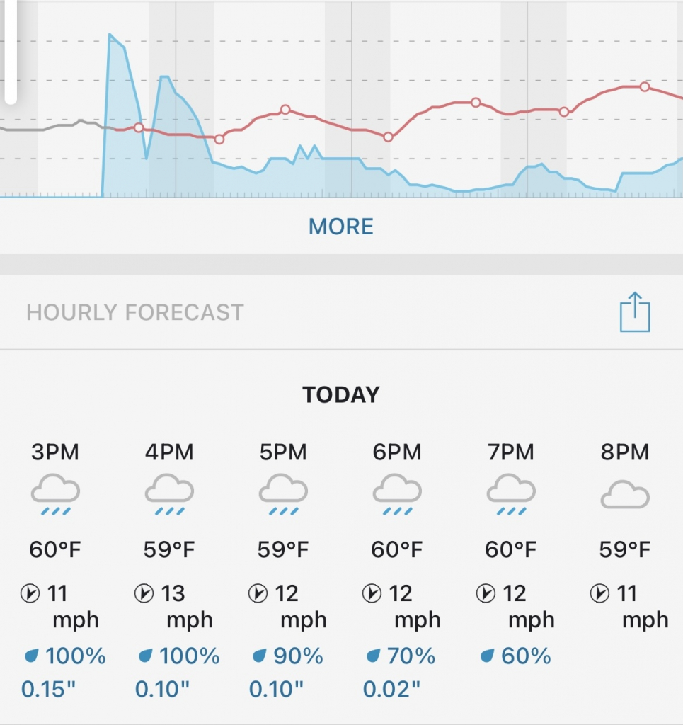 weather forecast for today's surprise proposal