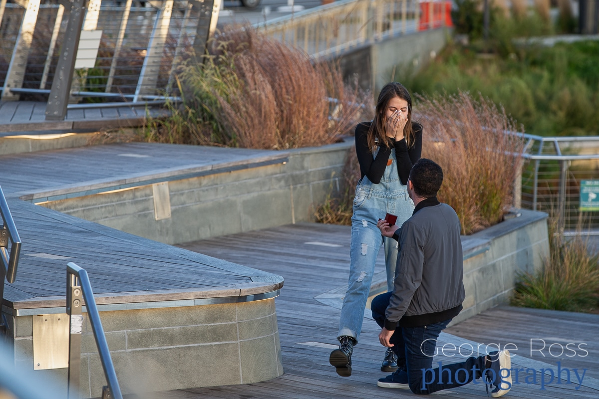 surprise proposal in providence rhode island